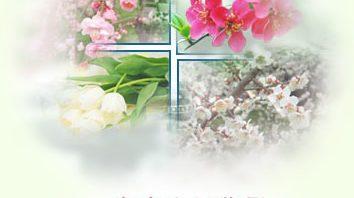 广州殡仪馆拜祭